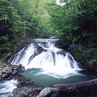 マンガノ滝