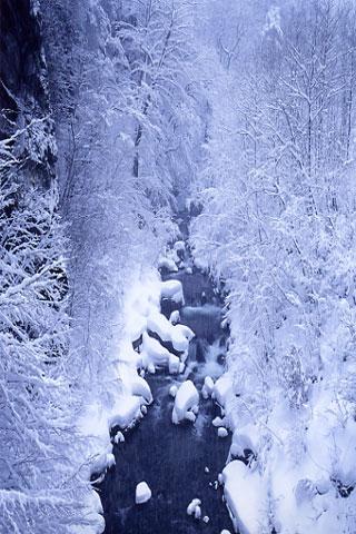大雪の渓谷