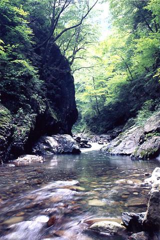 一ノ瀬渓谷の春