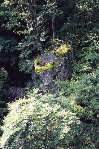 笠取山山頂付近の水干